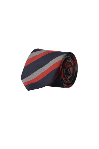 کراوات مردانه مدل 2021 برند آلتین ییلدیز رنگ لاجوردی کد ty68898049
