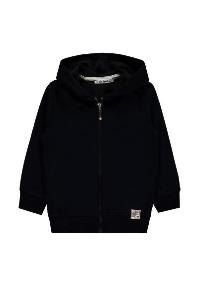 سفارش سویشرت پسرانه ارزان برند Al-Giy رنگ لاجوردی کد ty104907144