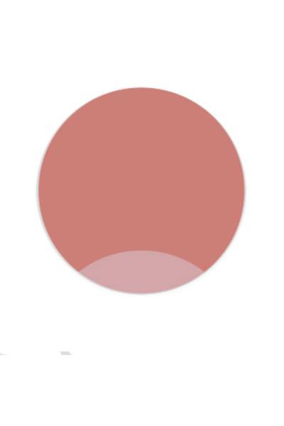 خرید رژ لب جدید برند ROSEVELT رنگ بژ کد ty66357569