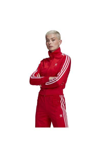خرید نقدی گرمکن ورزشی ارزان مردانه برند آدیداس رنگ قرمز ty91849026