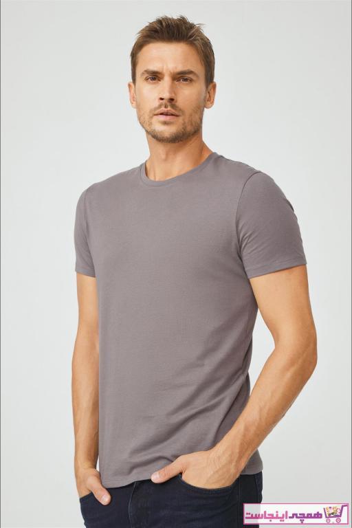 خرید پستی تی شرت زیبا مردانه برند آوا رنگ نقره ای کد ty53677772