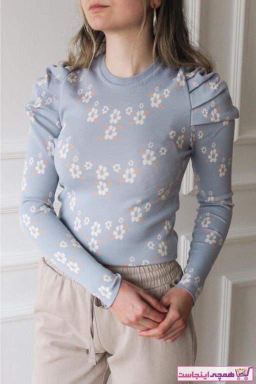 فروشگاه بلوز زنانه اینترنتی برند Niora رنگ آبی کد ty96989556