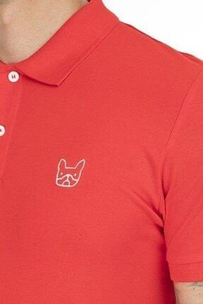 خرید انلاین پولوشرت مردانه خاص برند جک اند جونز رنگ قرمز ty46209768