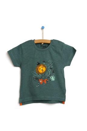 فروش پستی تیشرت نوزاد پسرانه شیک جدید برند HelloBaby رنگ سبز کد ty121933995