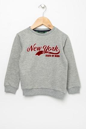 خرید پستی سویشرت پسرانه فانتزی برند LİMON COMPANY رنگ نقره ای کد ty42034149