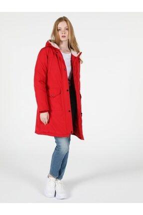پالتو جدید زنانه شیک برند Colins رنگ قرمز ty55636025
