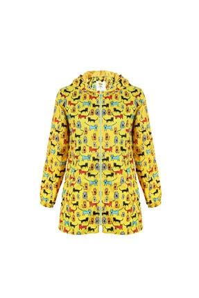 خرید انلاین بارانی زنانه خاص برند Biggdesign رنگ زرد ty52331909