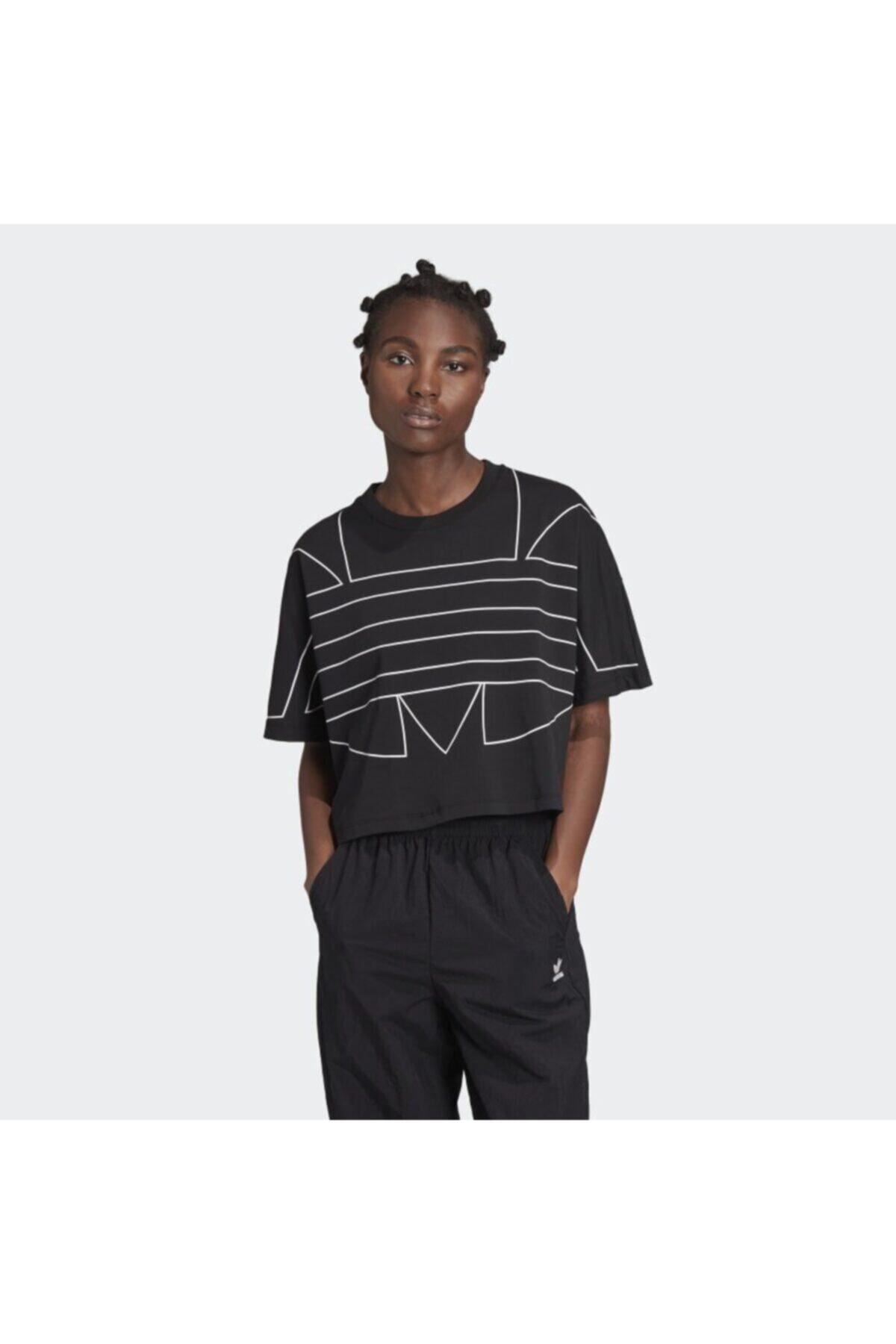خرید انلاین تیشرت ورزشی مردانه طرح دار برند آدیداس رنگ مشکی کد ty46701061