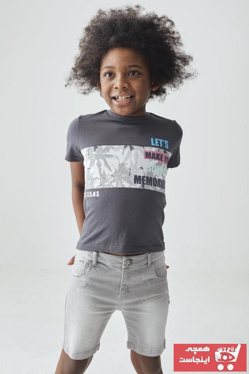 فروشگاه تی شرت پسرانه اینترنتی برند Nebbati رنگ نقره ای کد ty94793021